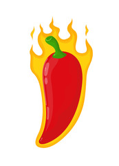 Burn hot angry evil chili pepper in fire