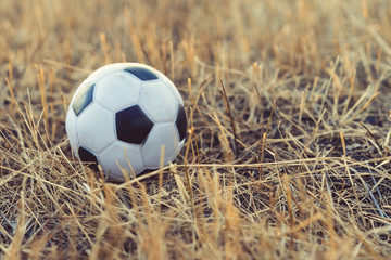 close-up football toys on the autumn grass