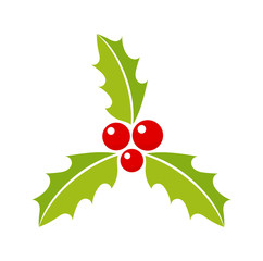 Christmas holly berries plant icon