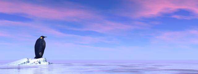 Single emperor penguin - 3D render