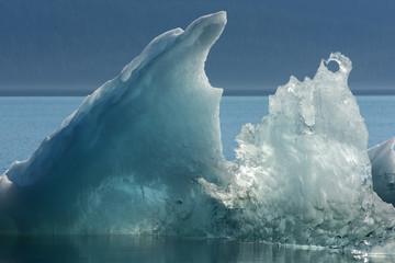 Iceberg Sculpture, Endicott Arm, Alaska
