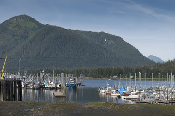 Overview of Harbor, Petersburg, Alaska