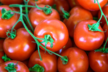 Fresh organic tomatoes as background. Close up