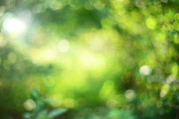Green bokeh backgorund