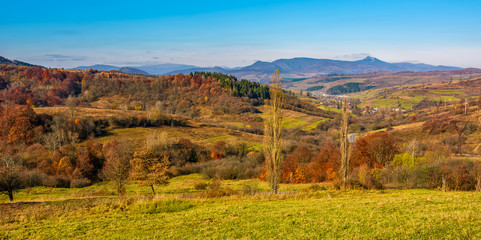 rural grassy fields on hills in gorgeous mountains. stunning panorama of countryside landscape in autumn
