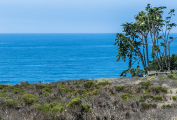 Zuma Beach - Malibu California