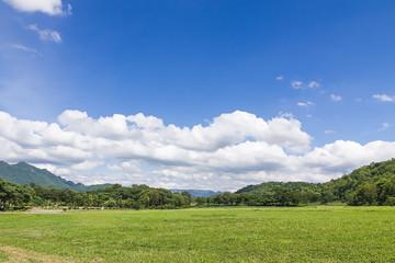 Green grass field rural landscape
