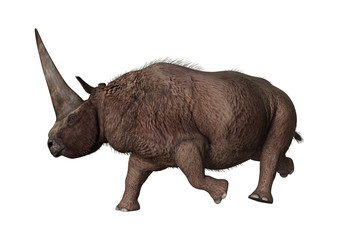 3D Rendering Rhinoceros Elasmotherium on White