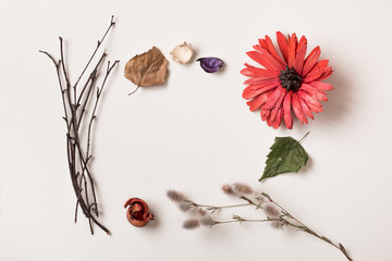 Autumn frame made of different colored fallen leaves, rustic branches, plants and red flower. Top view. Flat lay.