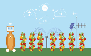 Wall Mural - Internet of things in agriculture. Smart farm with wireless control and robot. Vector illustration.