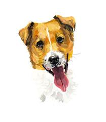 Jack Russell Terrier. Portrait dog. Gouache hand drawn illustration.