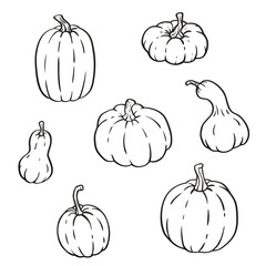 Collection of outline pumpkins, gourds different types, shapes and sizes. Vector isolated set for halloween, thanksgiving day