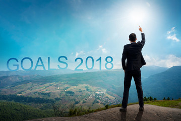 Back of successful businessman pointing up with his finger standing on top of mountain with sunlight sky background. Young man reaching goals of 2018 year, success and achievement concept. Copy space.