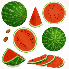 Watermelon vector. Set of half, whole slice of cut watermelon isolated on white background. Vector illustration.