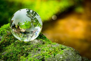 コケとガラスの地球儀