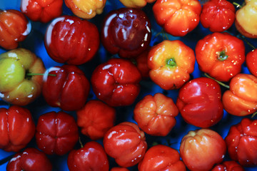 Barbados Cherry Floating in the Water