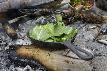 Cabbage in cooking utensil at campsite