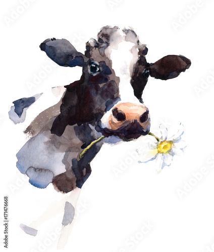 Fototapete Watercolor Cow with a Daisy Flower in its mouth Farm Animal Portrait Hand Painted Illustration