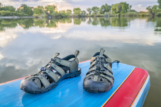 water sandals and paddleboard