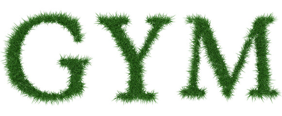 Gym - 3D rendering fresh Grass letters isolated on whhite background.