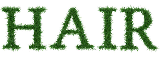 Hair - 3D rendering fresh Grass letters isolated on whhite background.