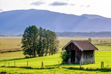 landscape murnauer moos - bavaria