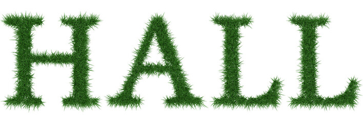 Hall - 3D rendering fresh Grass letters isolated on whhite background.