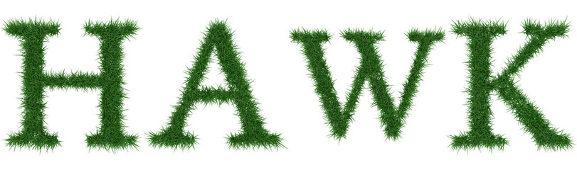 Hawk - 3D rendering fresh Grass letters isolated on whhite background.