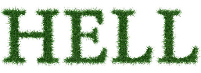 Hell - 3D rendering fresh Grass letters isolated on whhite background.