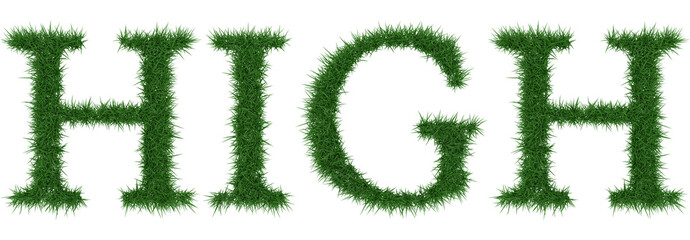 High - 3D rendering fresh Grass letters isolated on whhite background.