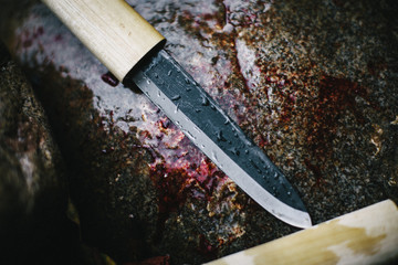 One dirty bloody wet knife on a stone after skinning a fish