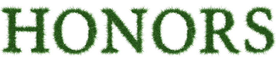 Honors - 3D rendering fresh Grass letters isolated on whhite background.