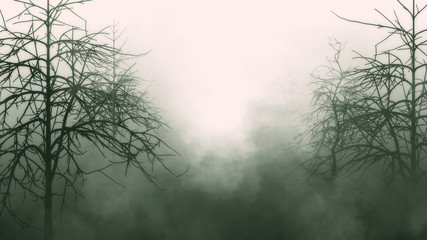 Old deep forest, scary trees, mystic grunge halloween background..3d rendeiring
