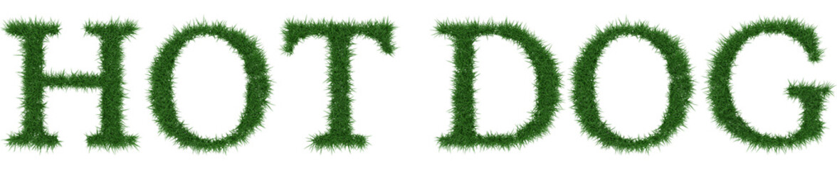 Hot Dog - 3D rendering fresh Grass letters isolated on whhite background.