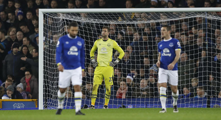 Everton's Maarten Stekelenburg looks dejected after Arsenal's Alexis Sanchez scored their first goal