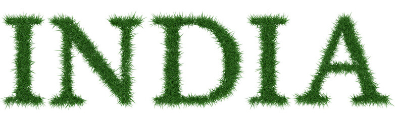 India - 3D rendering fresh Grass letters isolated on whhite background.
