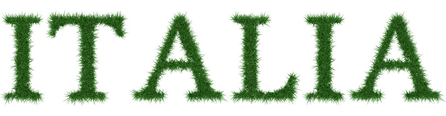 Italia - 3D rendering fresh Grass letters isolated on whhite background.