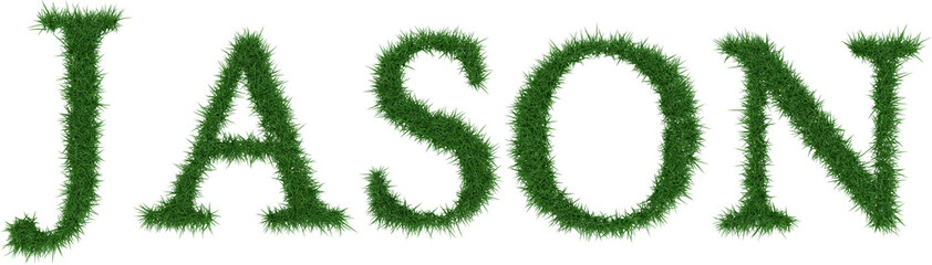 Jason - 3D rendering fresh Grass letters isolated on whhite background.
