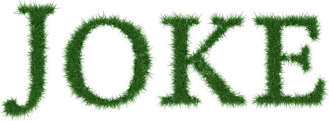 Joke - 3D rendering fresh Grass letters isolated on whhite background.