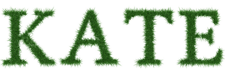 Kate - 3D rendering fresh Grass letters isolated on whhite background.