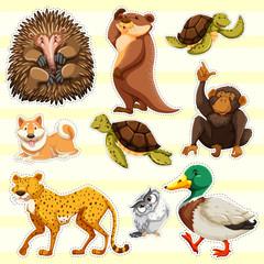 Sticker design for wild animals on yellow background
