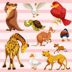 Sticker set with wild animals