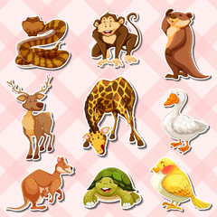 Sticker set with reptiles and other animals