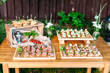 Delicious catering banquet buffet table decorated in rustic style in the garden. Different snacks and sandwiches. Outdoor.