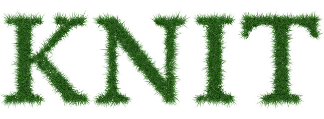 Knit - 3D rendering fresh Grass letters isolated on whhite background.
