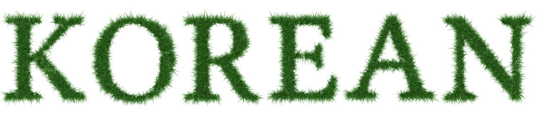 Korean - 3D rendering fresh Grass letters isolated on whhite background.