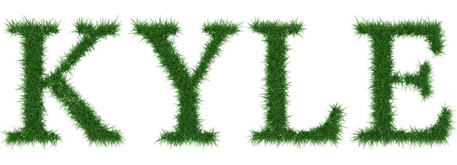 Kyle - 3D rendering fresh Grass letters isolated on whhite background.
