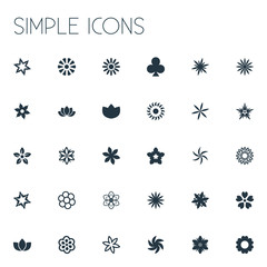 Vector Illustration Set Of Simple Blossom Icons. Elements Saffron, Anemone, Decoration And Other Synonyms Chamomile, Delphinium And Daisy.