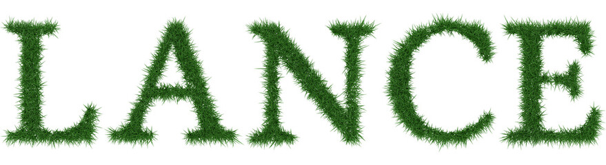 Lance - 3D rendering fresh Grass letters isolated on whhite background.