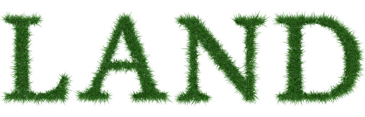 Land - 3D rendering fresh Grass letters isolated on whhite background.